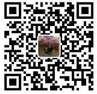 爱博诚信网投景秀园林绿化工程有限公司
